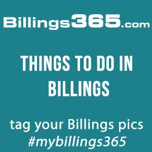 B365 - Sponsor